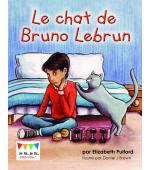 Le chat de Bruno Lebrun